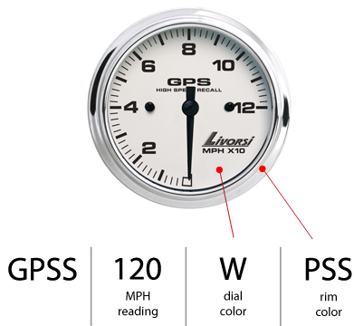 Livorsi GPS Speedometer part number 10x update